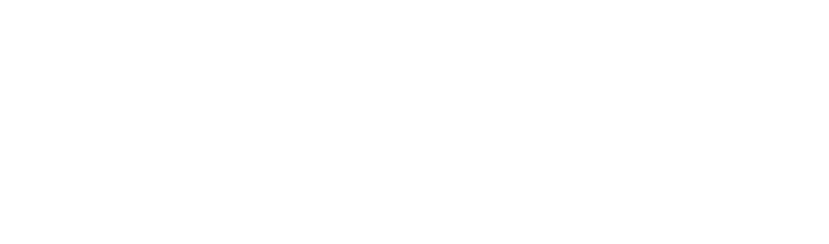 PROMOS MADE SIMPLE an AMS Business Solution